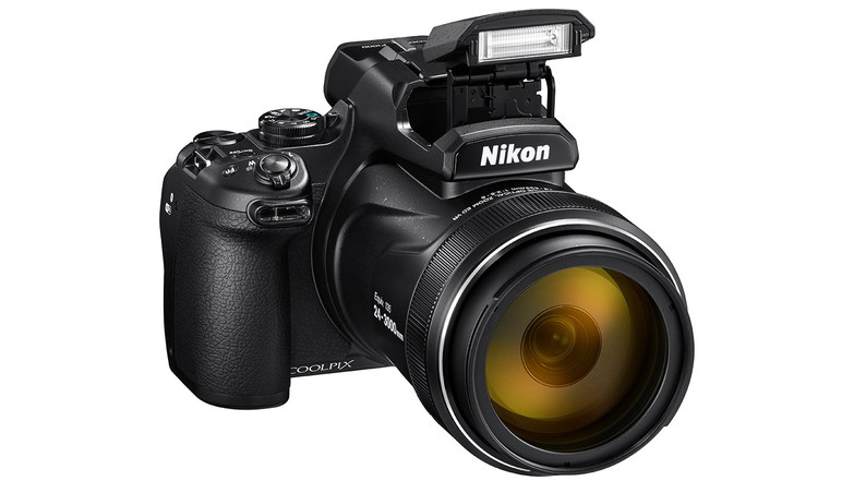 Nikon P1000 Review: More Zoom Is Not Possible